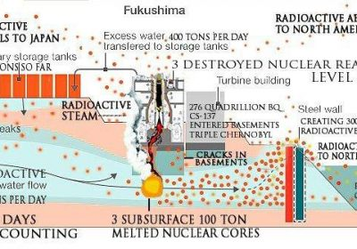 Fukushima response team on Facebook