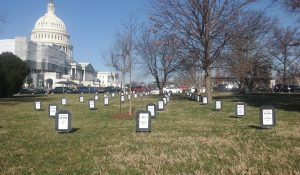 """""""347 Bills lay buried in the Republican graveyard"""" art project"""