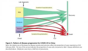 COVID-19 Identification Classification