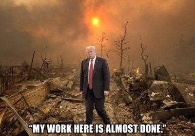 #MAGAThugs-in-Chief